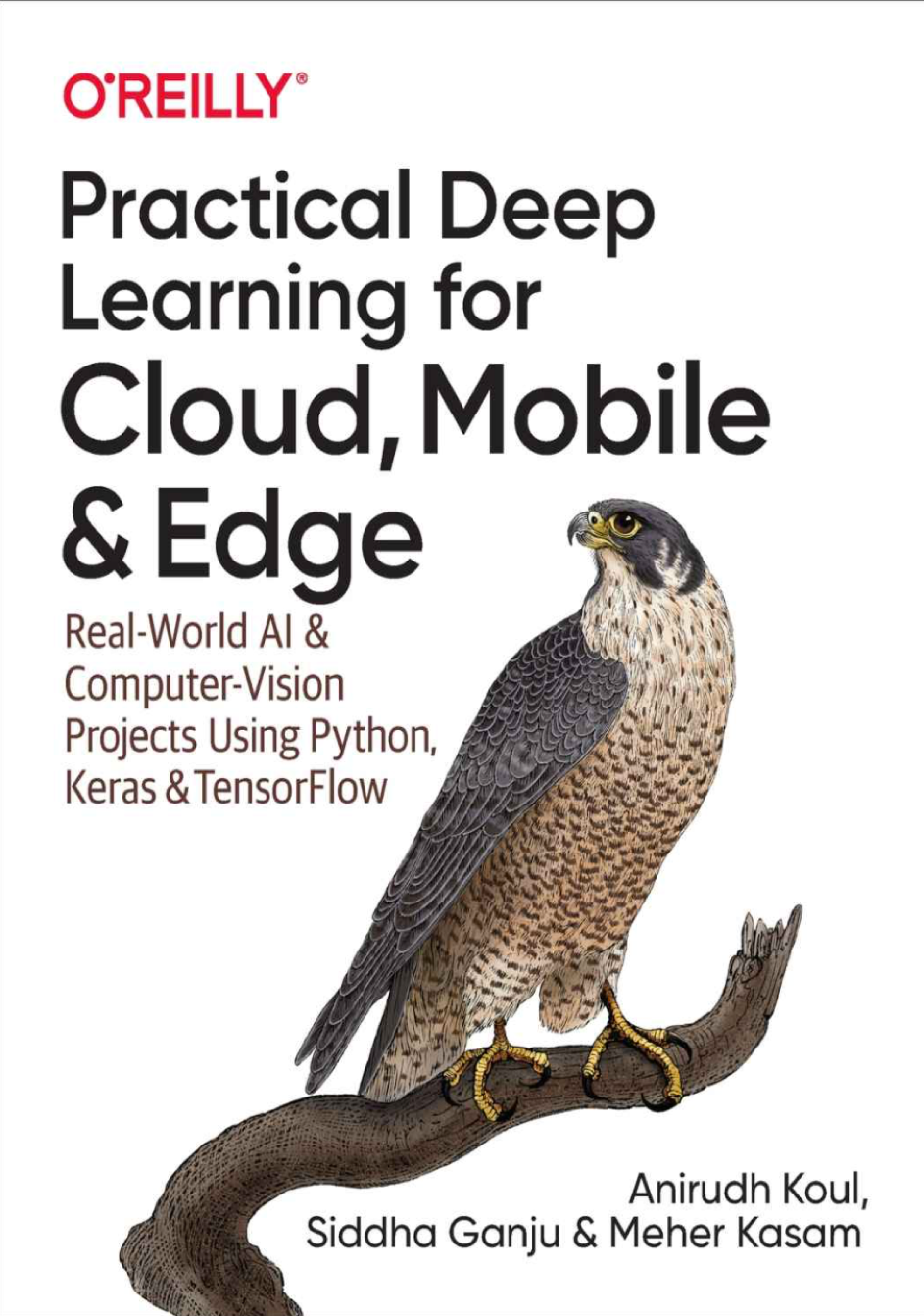 Practical Deep Learning for Cloud, Mobile, and Edge at Social-Media.press